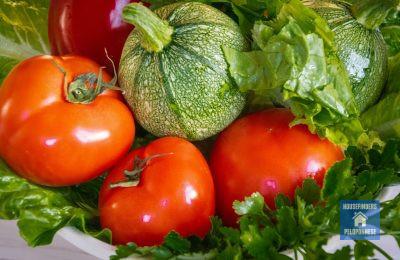 vegetarian grekland