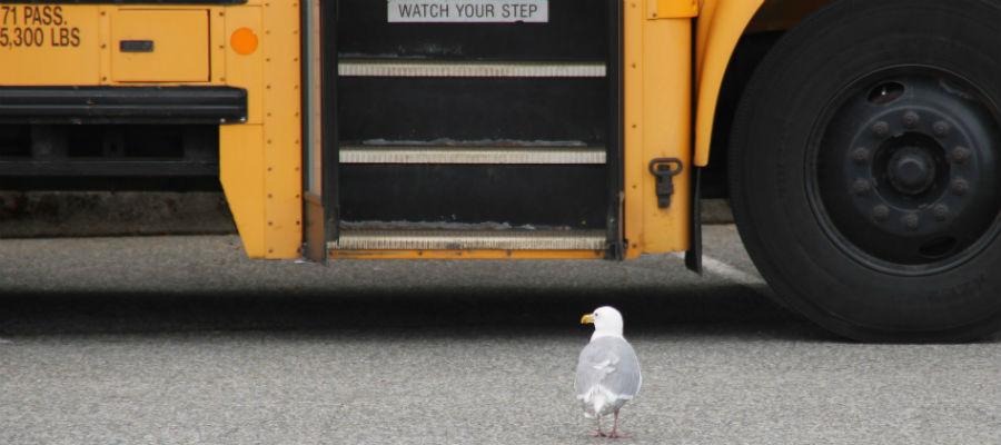 flyg aten res kalamata stoupa buss